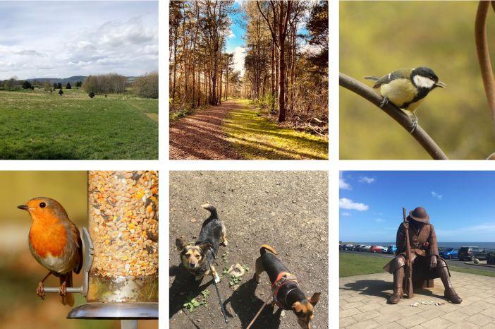 ATS UK-Wellness and Nature